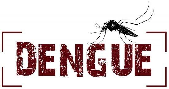 Alerta para o crescente número de casos da Dengue